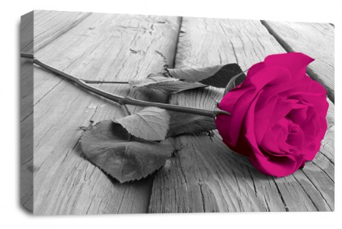 Rose Flower Canvas Wall Art Plum Grey White Floral Picture Print